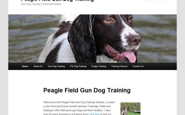 Peagle Field Gun Dogs